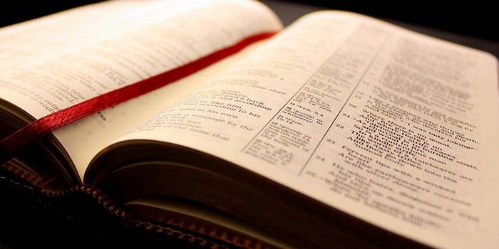 Biblia Android