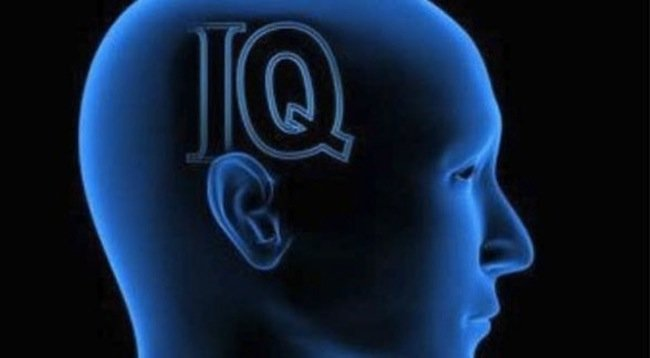 Coeficiente intelectual 1