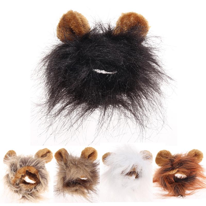 disfraz para perros