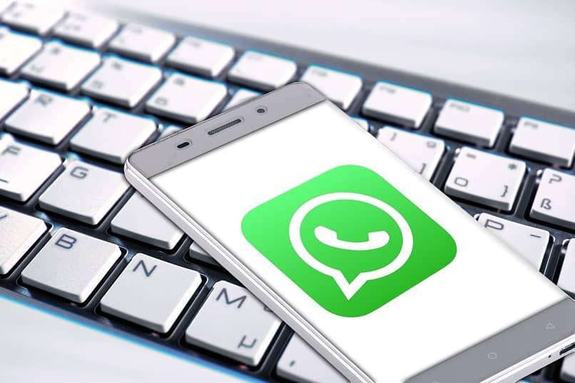 whatsapp fotos videos