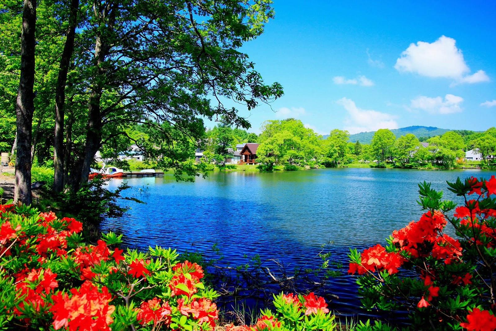 16001067 beautiful places pinterest paisaje tropical paisajes y flores silvestres