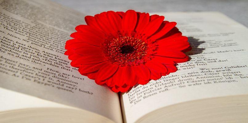 libro de poesias romanticas