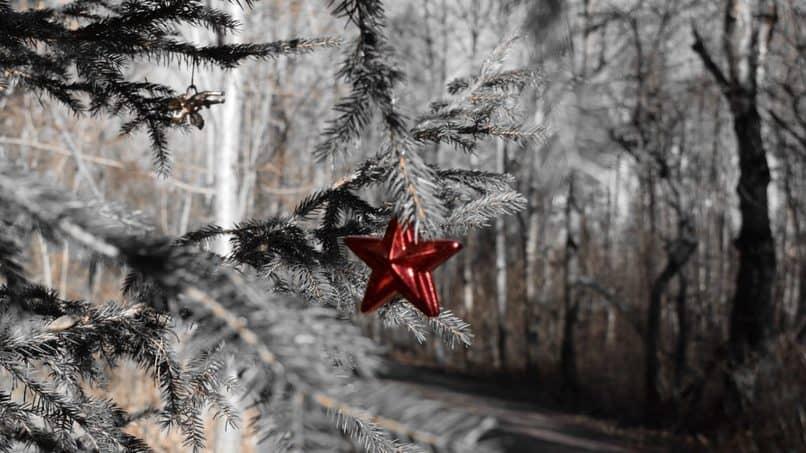 coleccion de imágenes navidenas