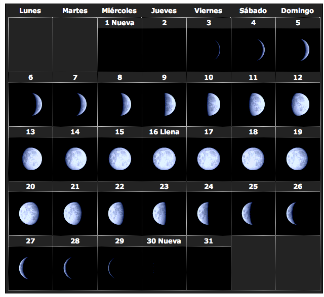 Calendario lunar una gu a esot rica para tu vida rwwes for Calendario lunar de hoy