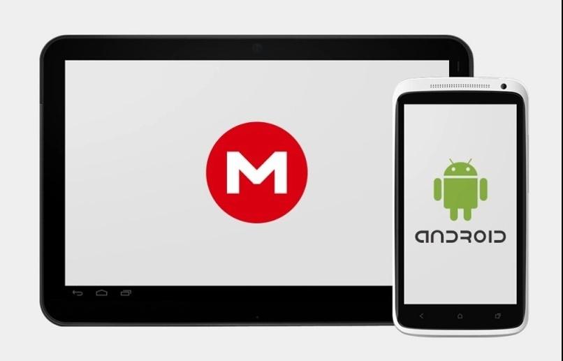 resolver error android