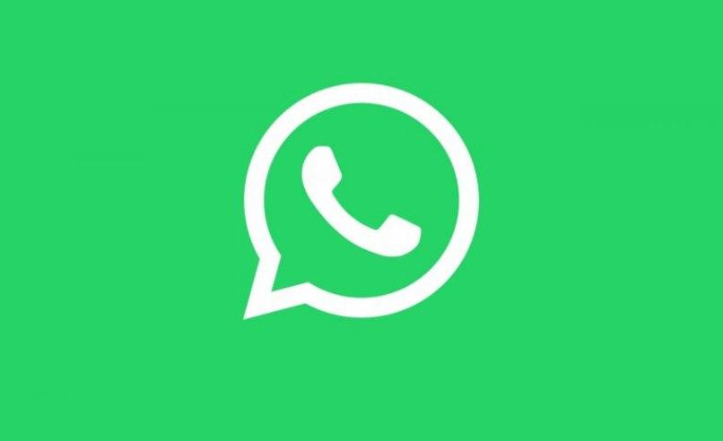 fondo verde logo
