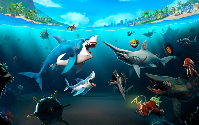 abrir la puerta del cangrejo en shark evolution
