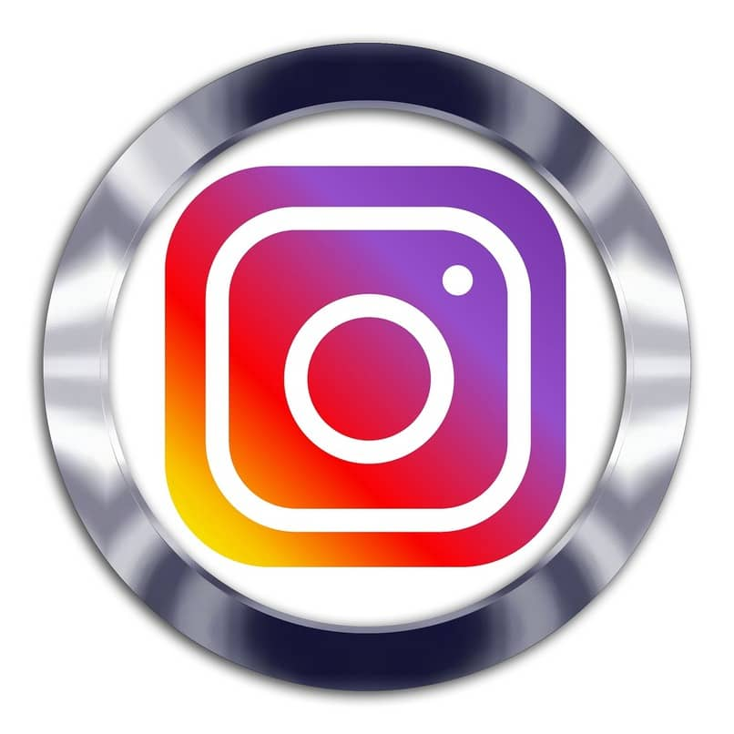 icono de instagram dentro de un círculo color plateado