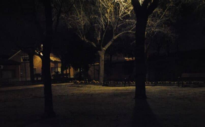 fotos sin flash durante la noche