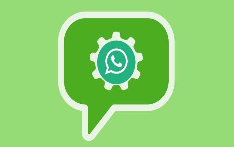 programar respuestas whatsapp