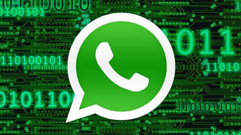fondo tipo matrix whatsapp