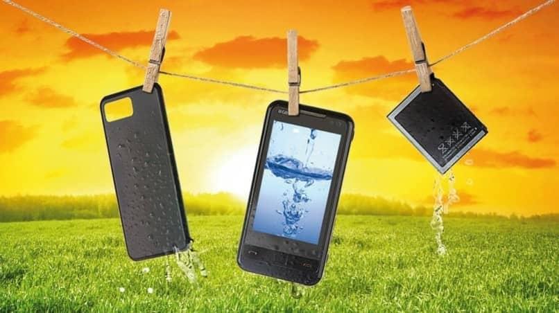 smartphone y sus partes mojadas