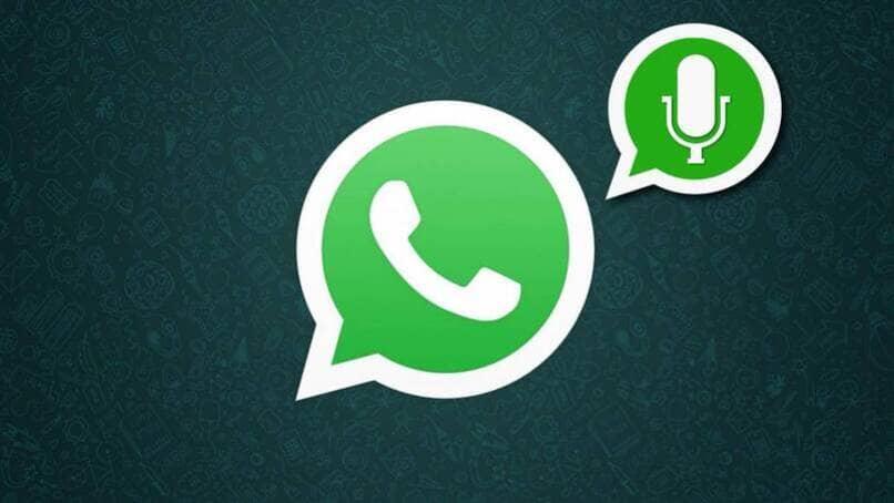 guardar los audios de whatsapp