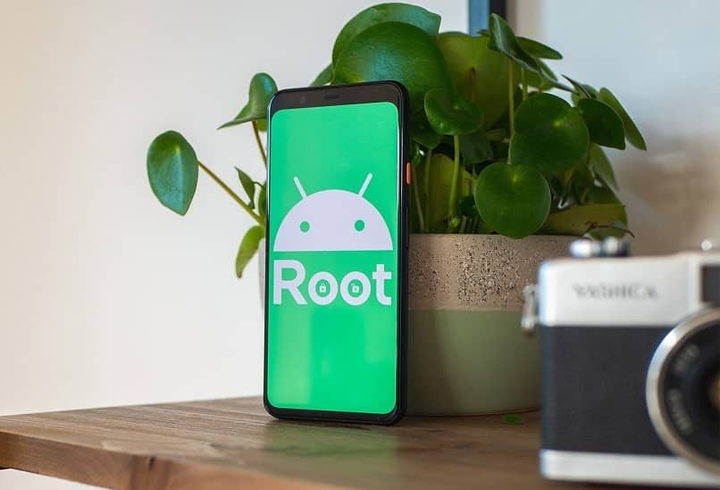 root movil
