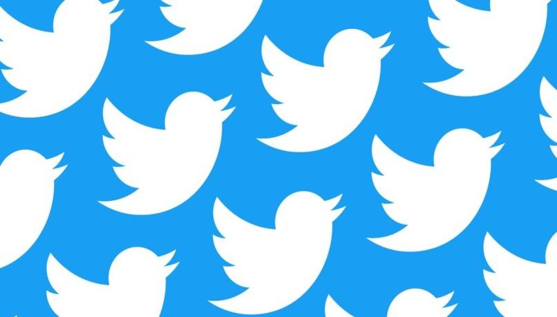 delete twitter seguidores