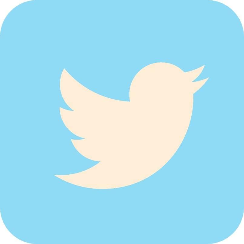 recuadro logo twitter icono
