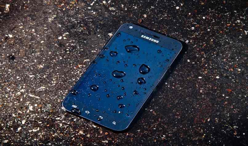 repara celular mojado