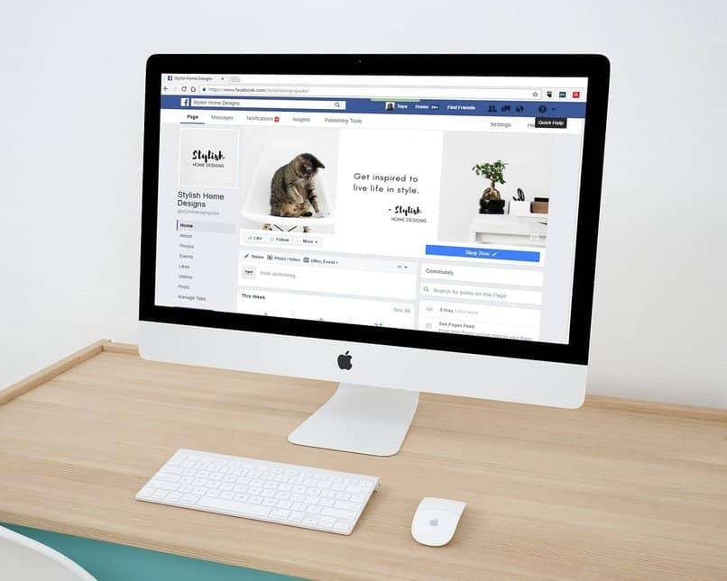 facebook se queda en blanco