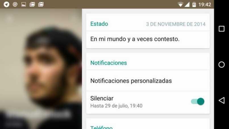 estados whatsapp contactos