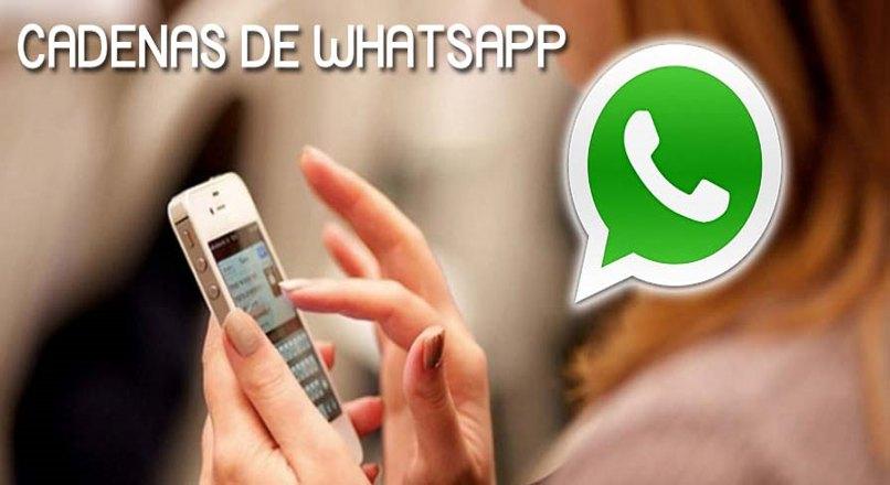 reenviar mensajes cadena whatsapp