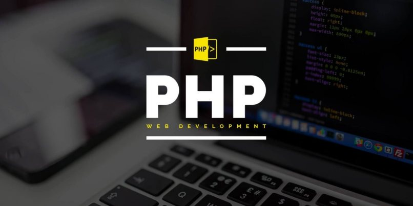 web development programa