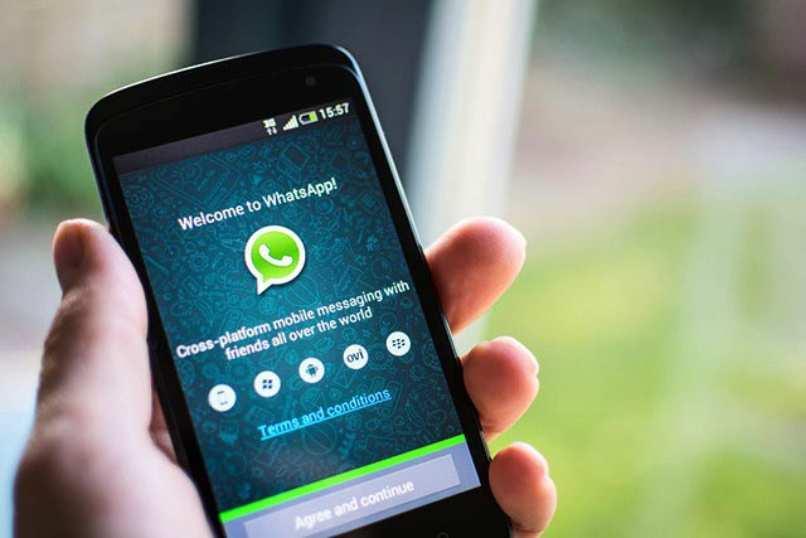 aplicacion whatsapp instalada en celular nokia color negro