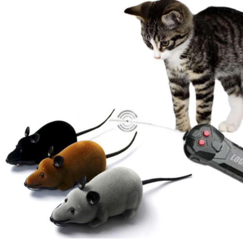 gatos control remoto